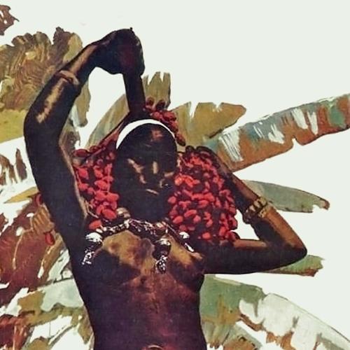dj_jb_brazillus_africanus_4