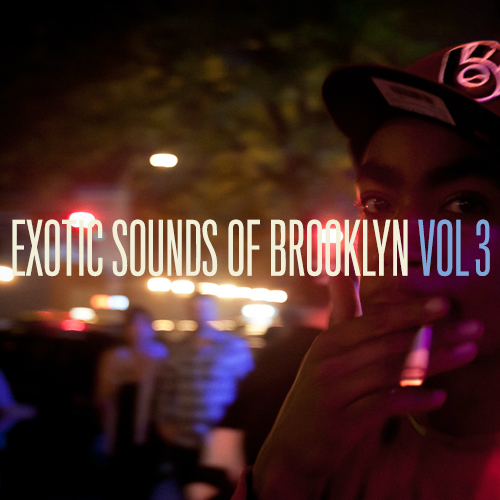EXOTIC SOUNDS OF BROOKLYN VOL. 3